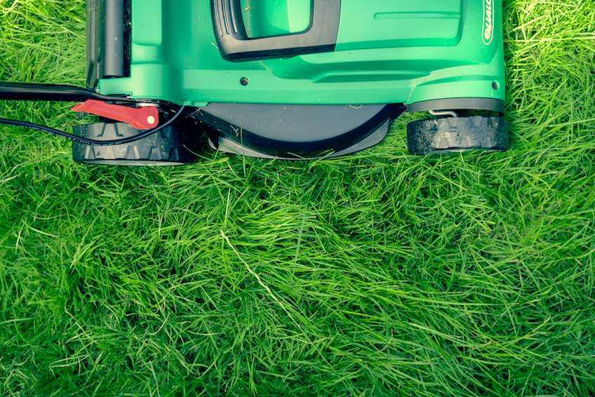Gartenpflege und Grünpflege